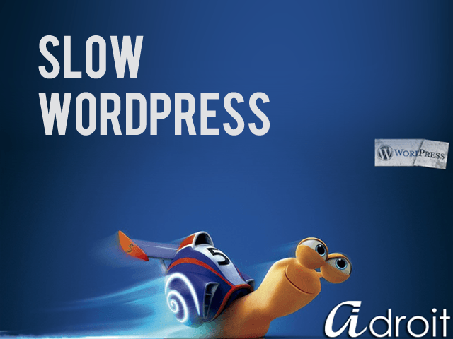 Why is my WordPress site slow?