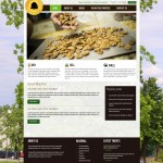 Pecan Tree Partners Midland